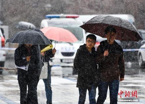 4月11日,新疆乌鲁木齐淅淅沥沥的降雨转变为一场纷纷扬扬的大雪,气温骤降。中新社记者 刘新 摄