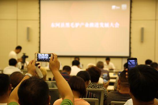 """6月19日晚,澳门银河国际娱乐官网省东阿 县60个养驴户与东阿阿 胶黑毛驴养殖技术专业 人员签订了""""一对一帮 扶""""协议。"""