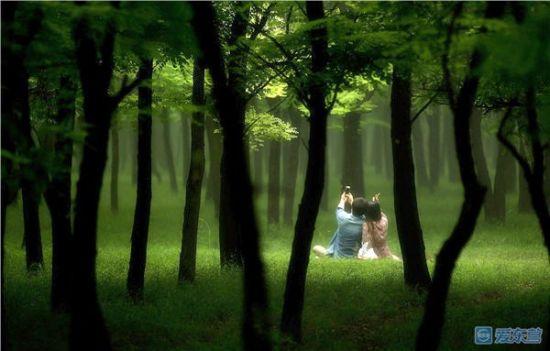 绿荫中的甜蜜 李兵 摄