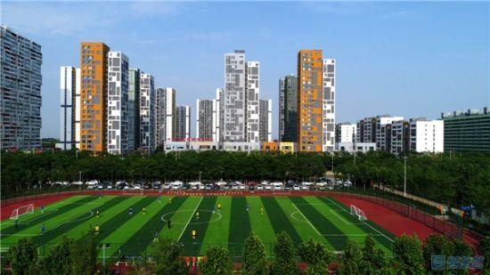 绿色家园 杨廷奎 摄