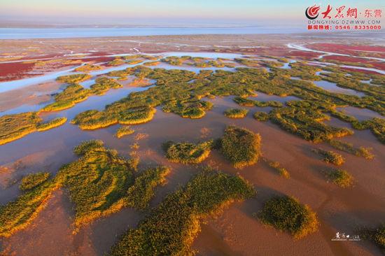 旅游资源 处处彰显黄河特质