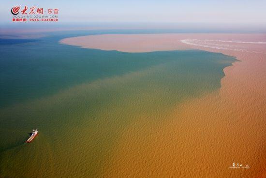 黄河入海口迎来最美的时节