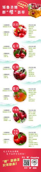 山东邹城成功举办第三届大樱桃全国产销对接会。