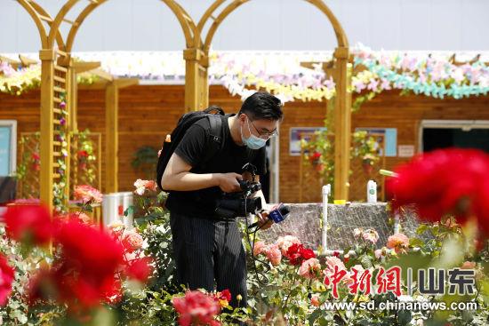 媒体记者对平阴当地的玫瑰加工企业进行探访。沙见龙 摄