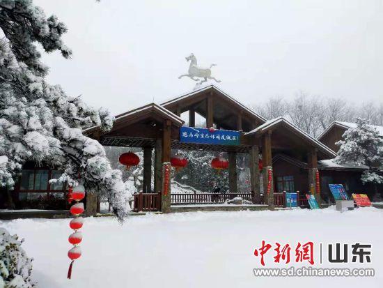 跑马岭迎来降雪。