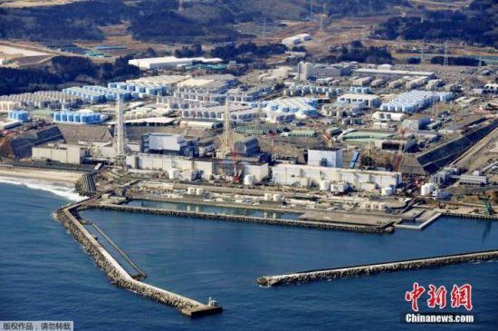 日本福岛海域鱼类再检出放射性物质超标 被禁上市