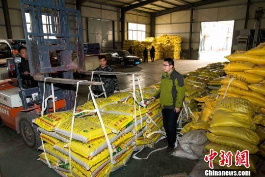 淄博博信农业科技有限公司在农行信贷支持下,保障春耕时节企业的化肥、粮种生产。 陈鹏 摄
